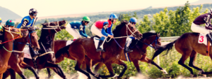 Image of horse Jockey racing in a race track