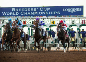 2018 Breeders Cup Wagering Guide Turfnsport Com