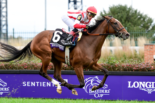 Breeders Cup Friday Results Newspaperofrecord Steals