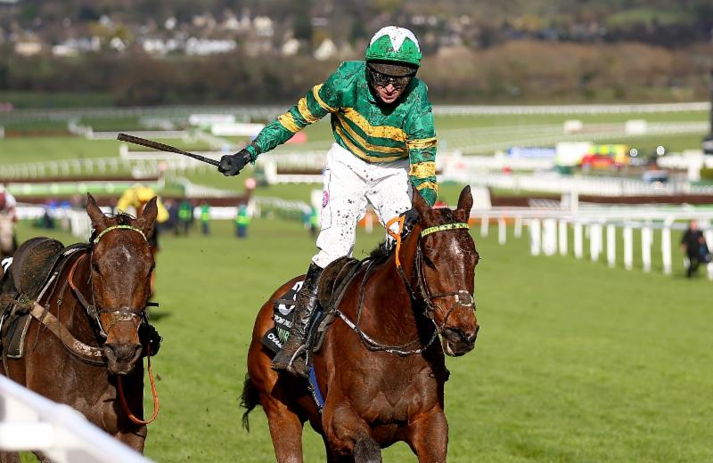 Katchit wins champion hurdle betting can you trade binary options for a living