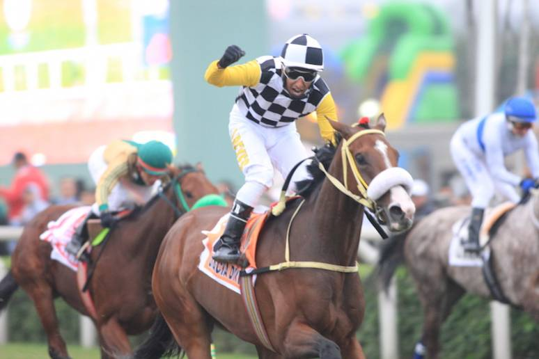 Gracia Divina Earns Berth In Breeders Cup Filly Amp Mare