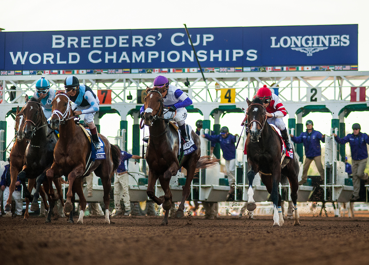 Saturday Breeders Cup Morning Line Odds And Post