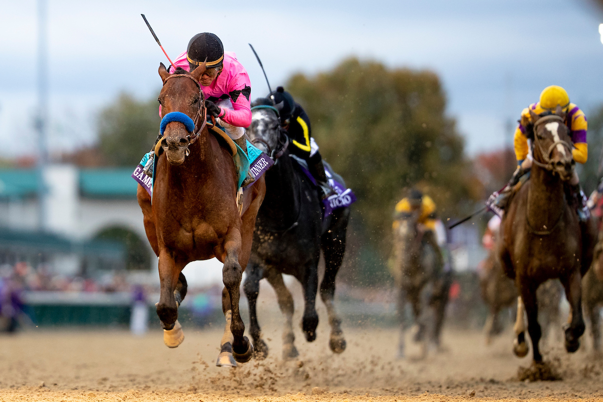 2019 Breeders Cup Juvenile Betting Trends Turfnsport Com