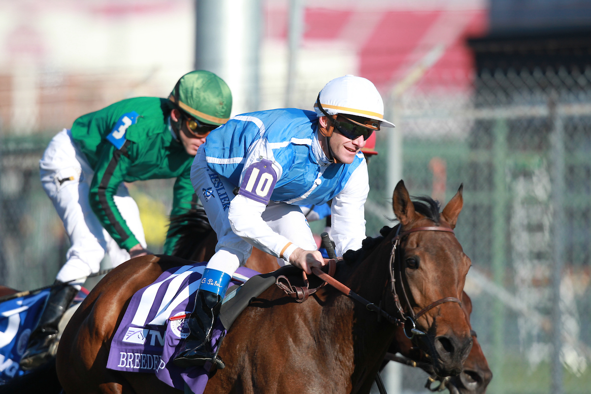 2019 Breeders Cup Mile Betting Trends Turfnsport Com