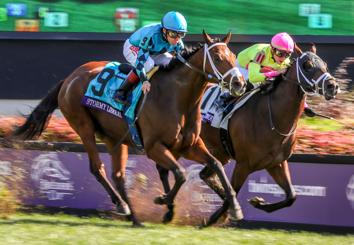Top Storylines For 2019 Breeders Cup Turfnsport Com
