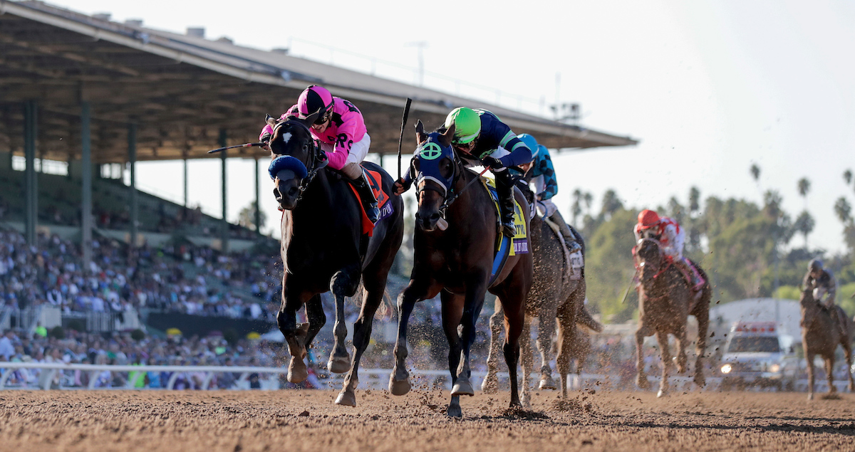 Kentucky Derby Future Wager Pool 1 Results Turfnsport Com