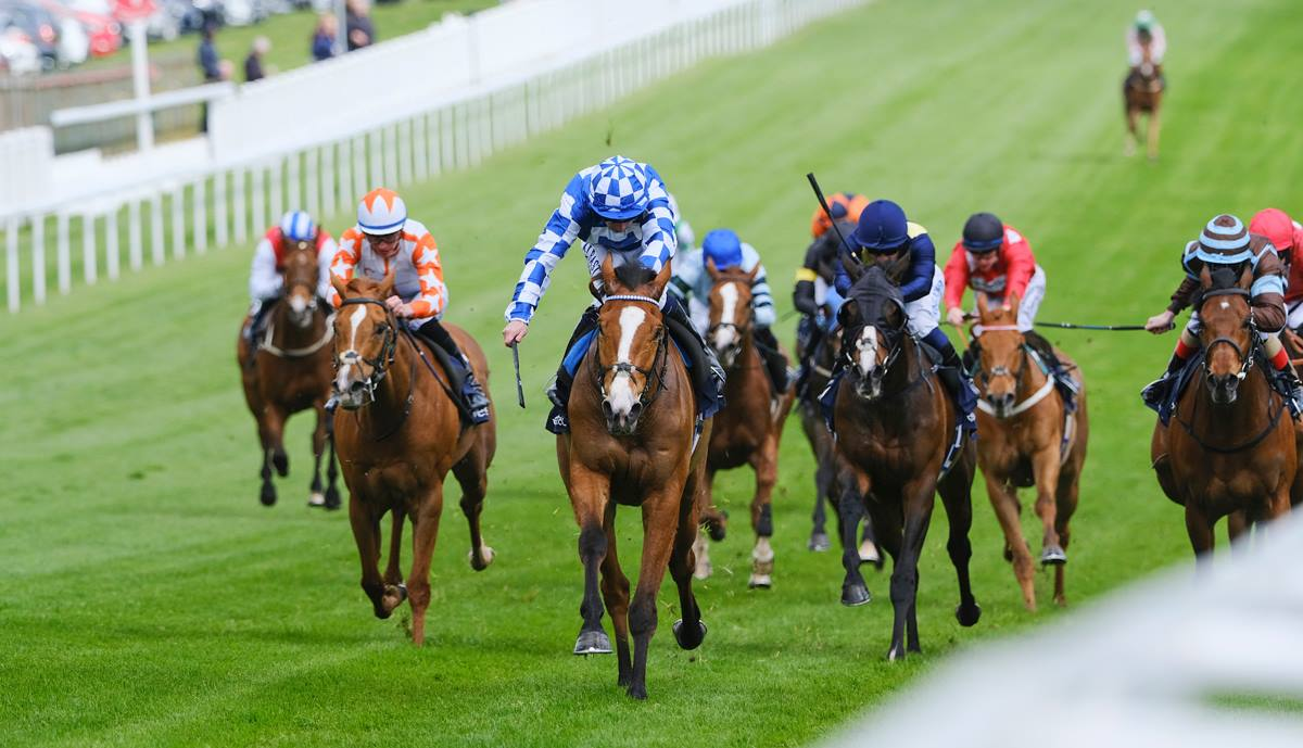 Investec derby betting online top rated online sports betting